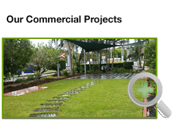 commercial landscpingprojects