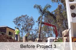 Ex ground tree being installed