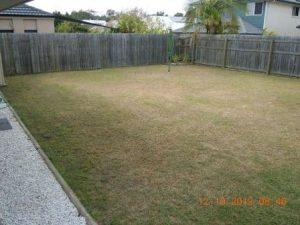 North Lakes garden design before image