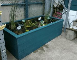 timber pond