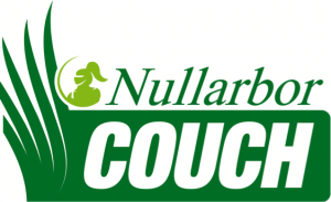 Nullabor Couch / turf Brisbane
