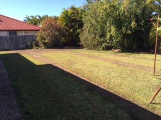 Landscape drainage