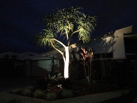 Mini spot light - Brisbane garden lighting - Landscaping Brisbane