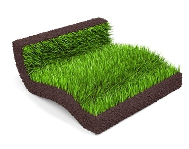 Turf prices Brisbane - Sunshine Coast - Gold Coast